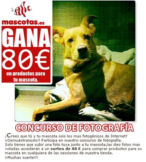 cheque-80-euros-mascotas
