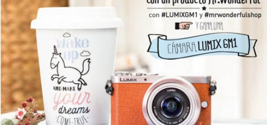 concurso-mr-wonderful